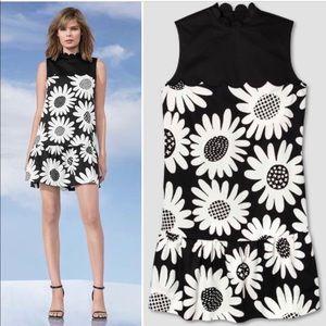 Victoria Beckham for Target Floral Dress 2X
